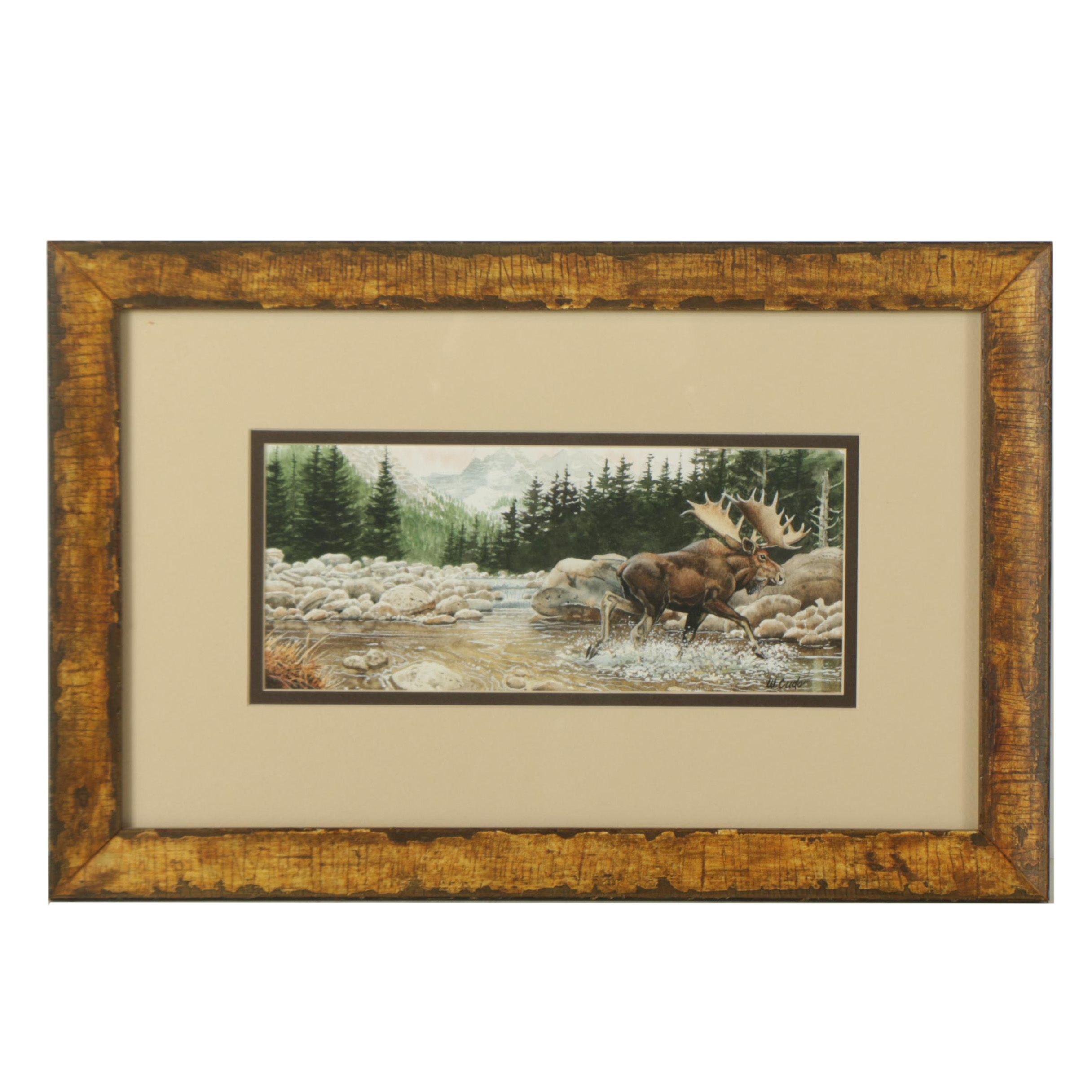 Walt Cude Watercolor on Paper of Moose in the Wild