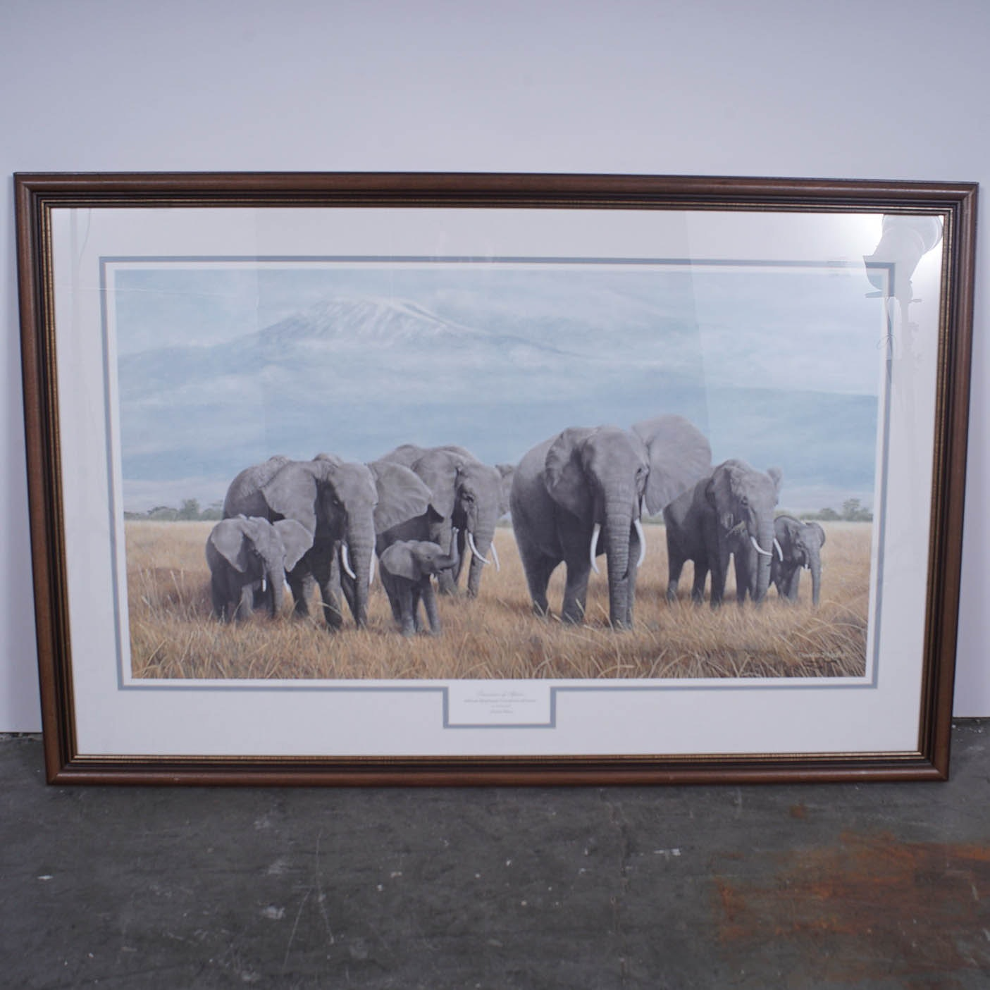 "Charles Frace Limited Edition Offset Lithograph ""Treasures of Africa"""