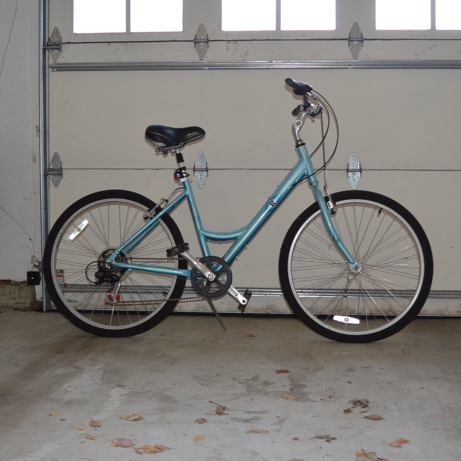 "Women's Raleigh ""Venture"" Bicycle"