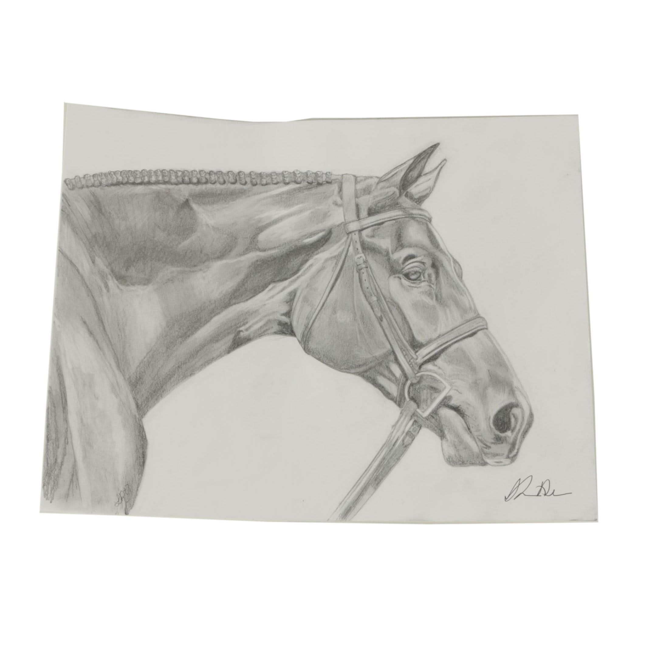 Graphite Drawing of a Horse