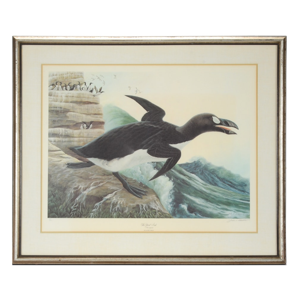 """John Ruthven Signed limited Edition Offset Lithograph """"The Great Auk"""""""