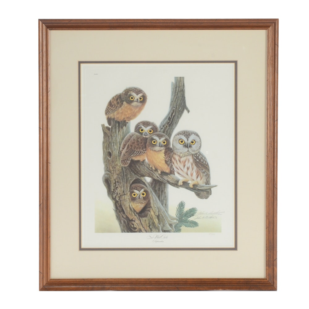 """John A. Ruthven Limited Edition Offset Lithograph """"Saw Whet Owls"""""""