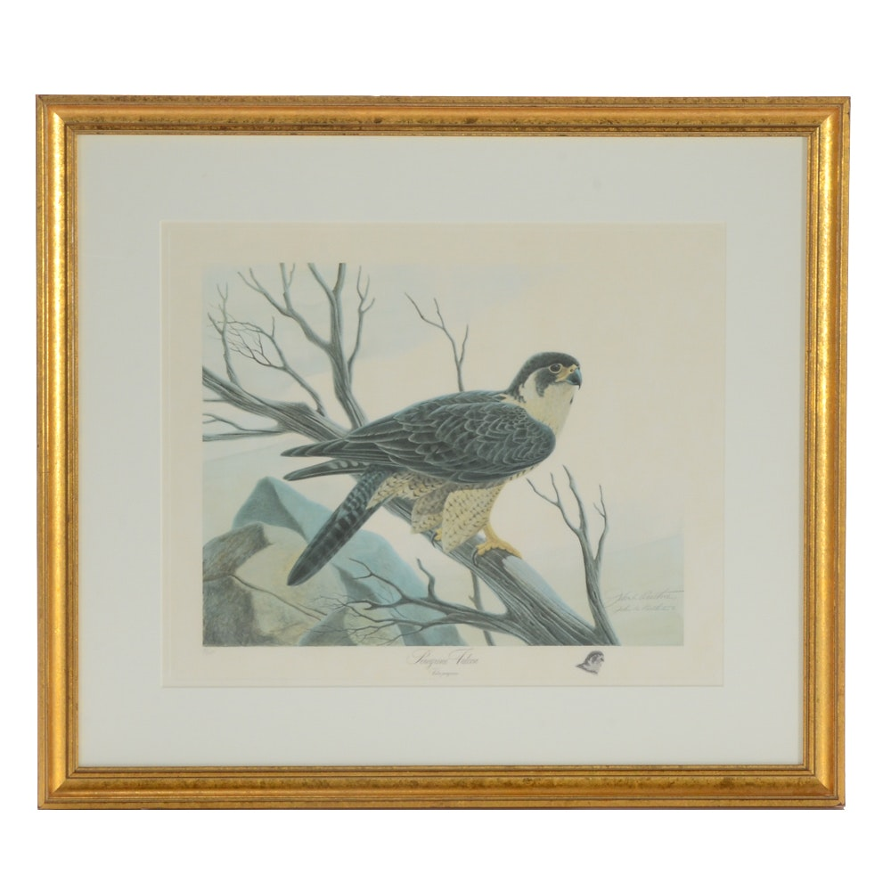 """John Ruthven Signed Limited Edition Offset Lithograph """"Peregrine Falcon"""""""