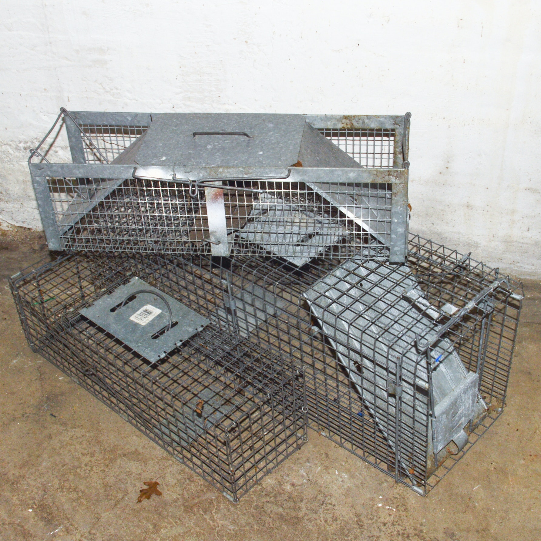 Havahart Catch-and-Release Animal Traps