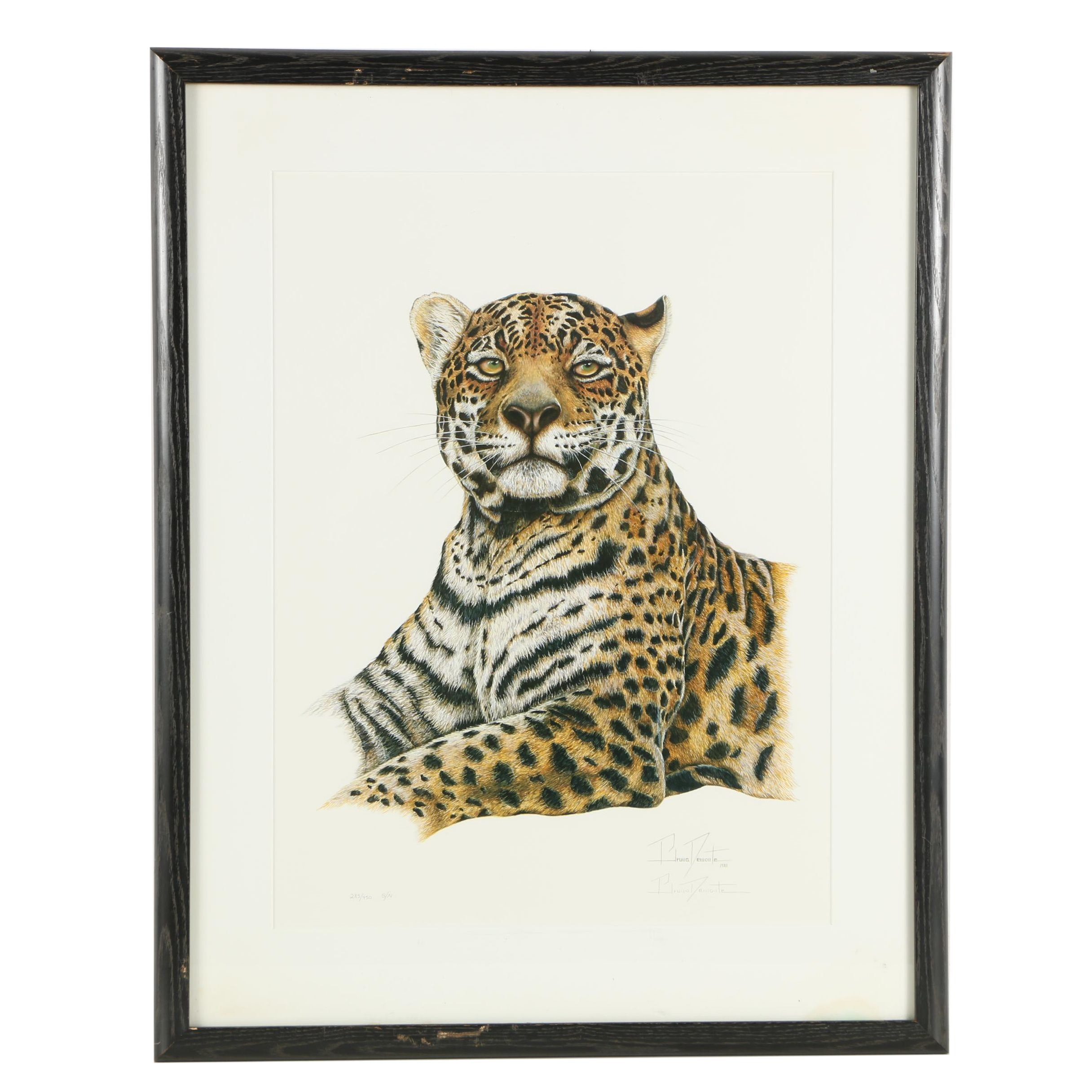 "Bruna Demonte Limited Edition Offset Lithograph on Paper ""Jaguar"""