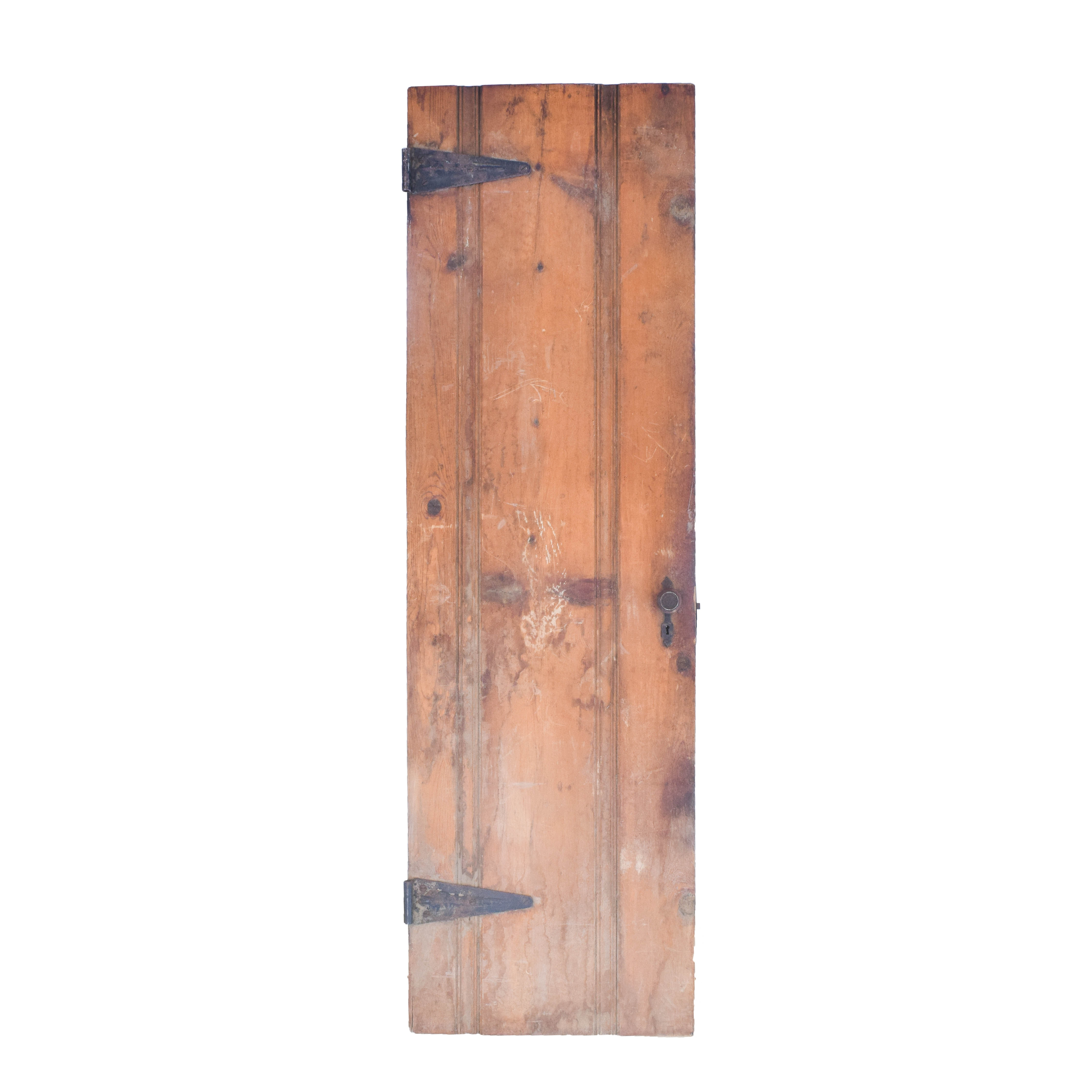 Vintage Panel Door