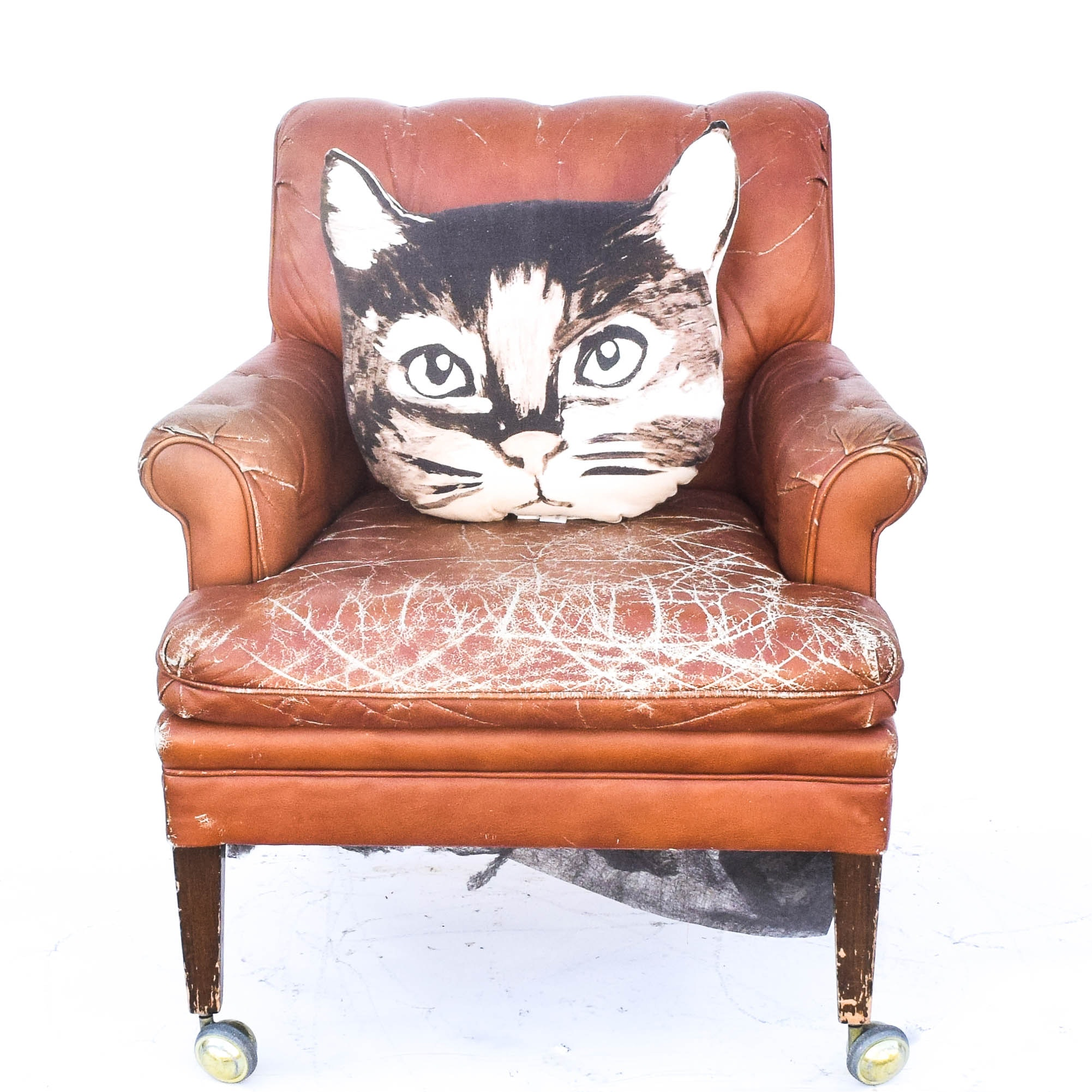 Vintage Leather Armchair with Cat Pillow