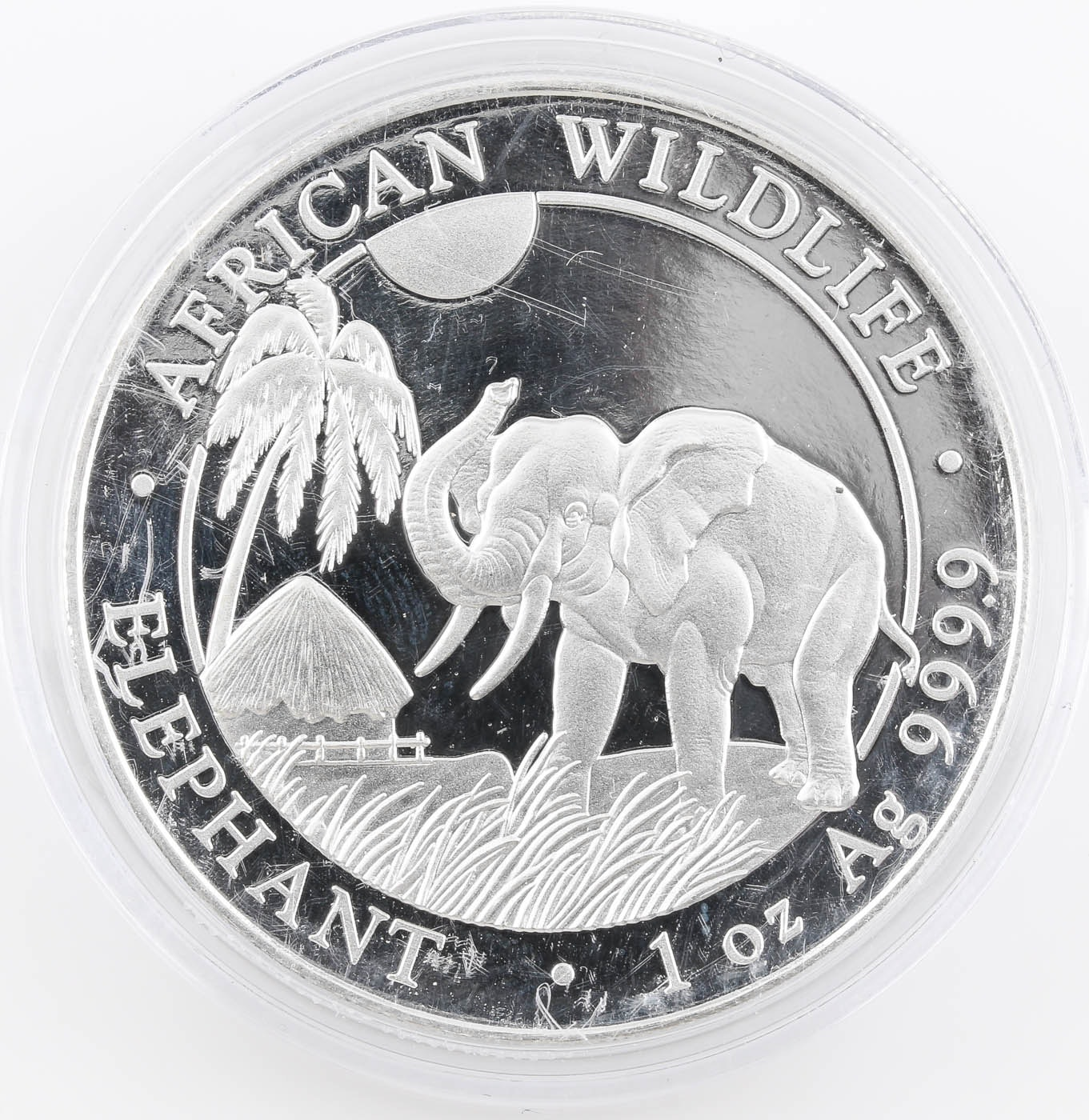 2017 African Wildlife Elephant 100 Shillings Silver Coin from Somali Republic