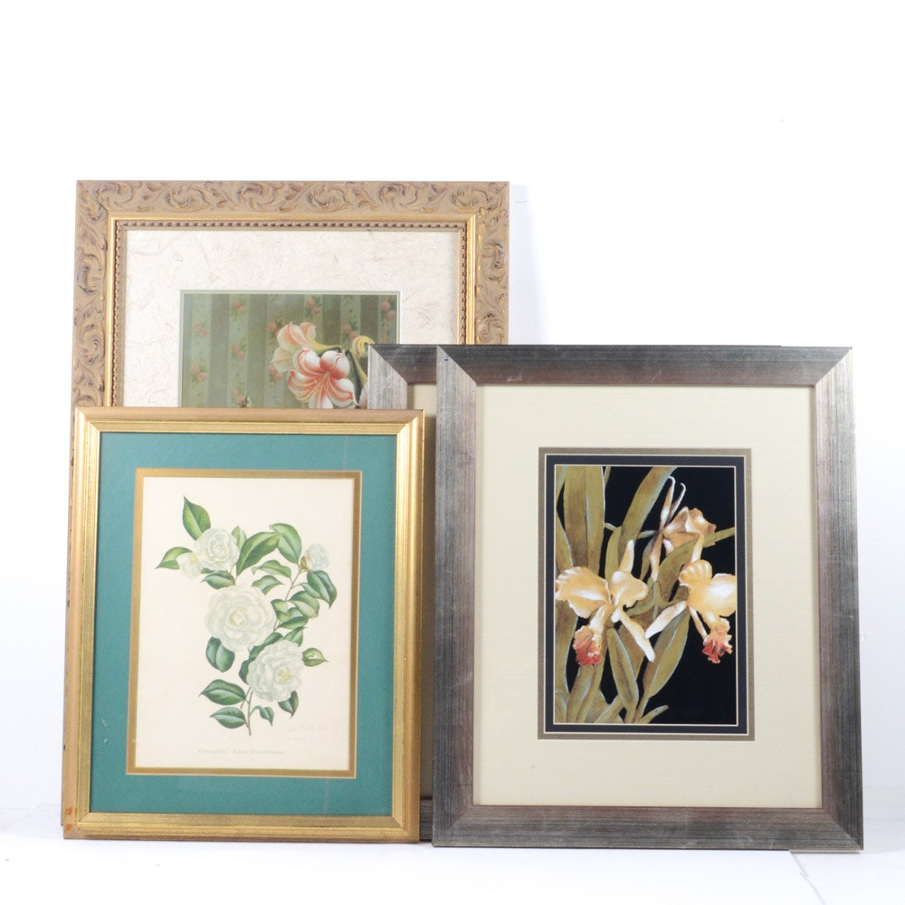 Offset Lithograph Prints Featuring Flowers