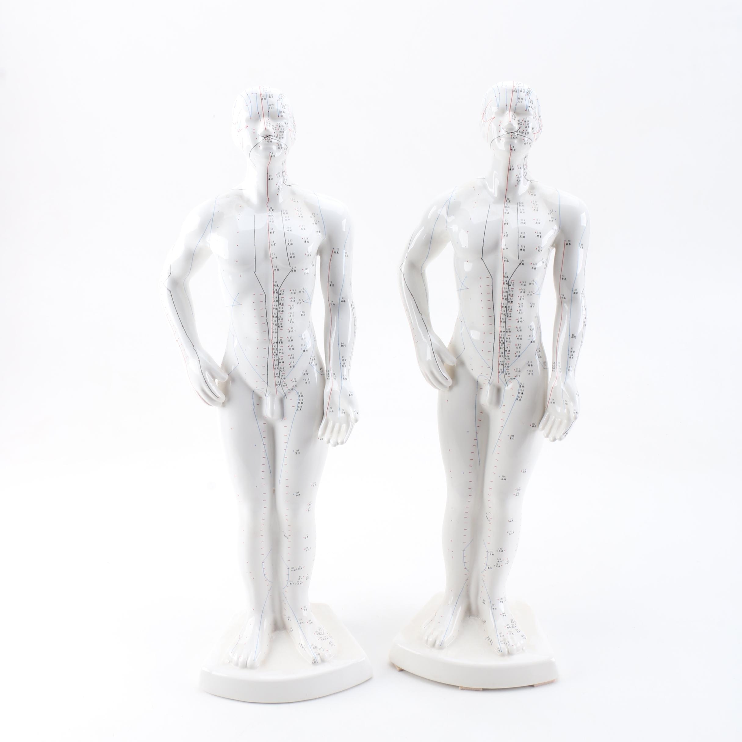 Pair of Chinese Acupuncture Models