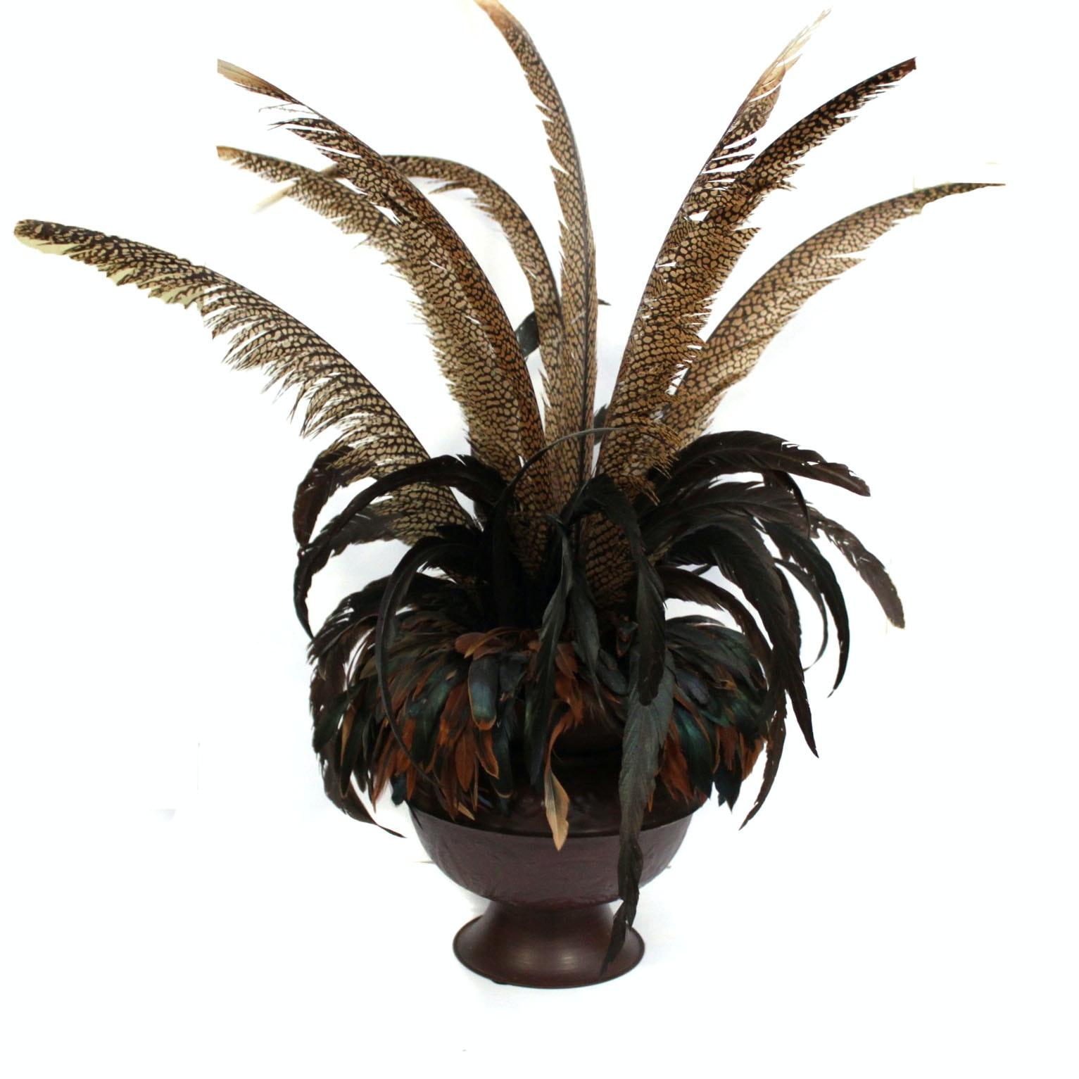 Decorative Feather Arrangement