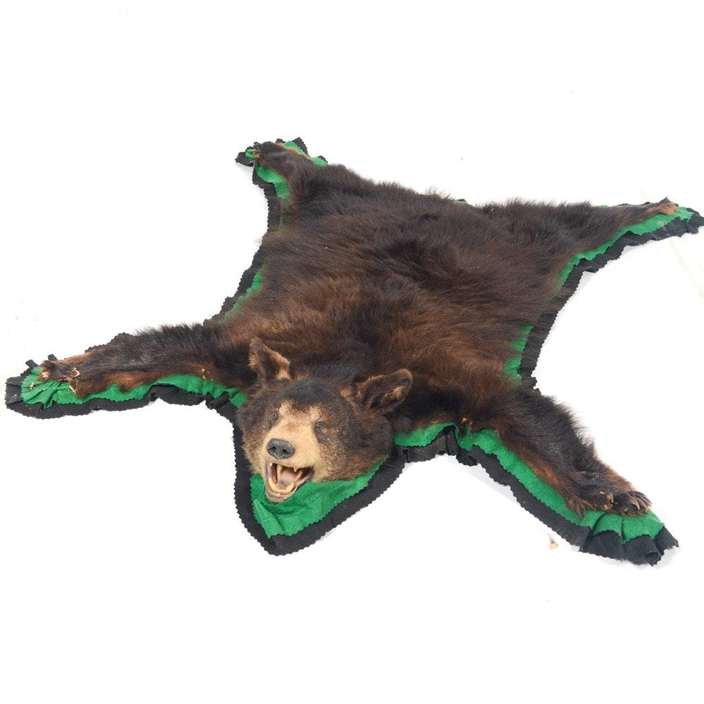 Vintage Black Bear Skin Rug