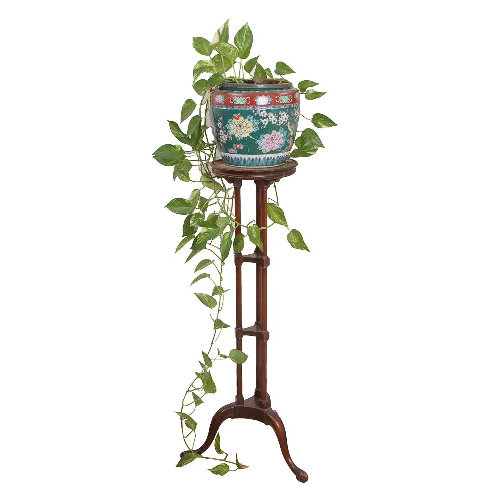 Chinese Planter with House Plant and Plant Stand