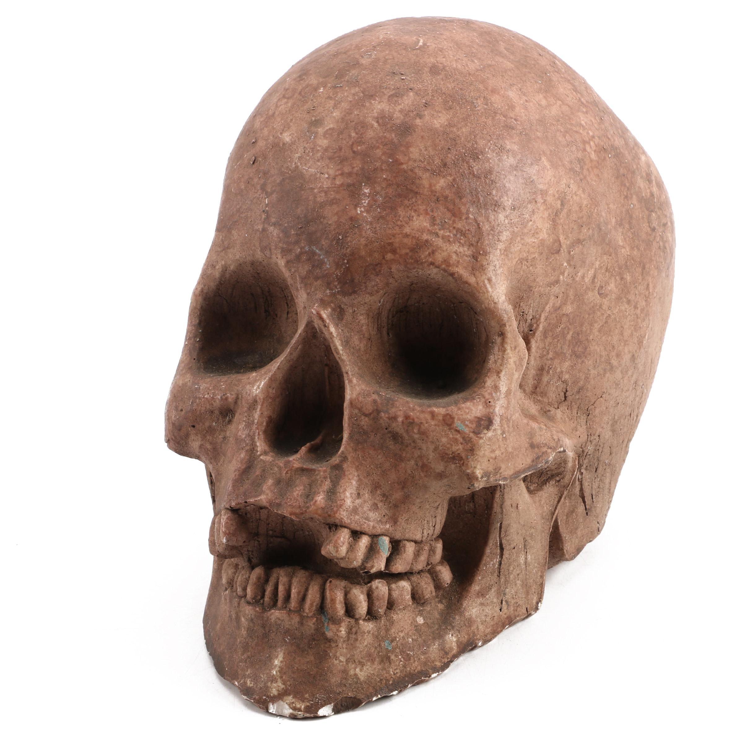 Decorative Ceramic Skull Sculpture