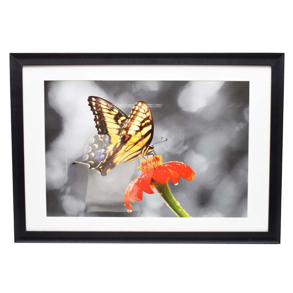 "Toni Wooldridge Framed Digital Photograph ""Flutter by 2"""