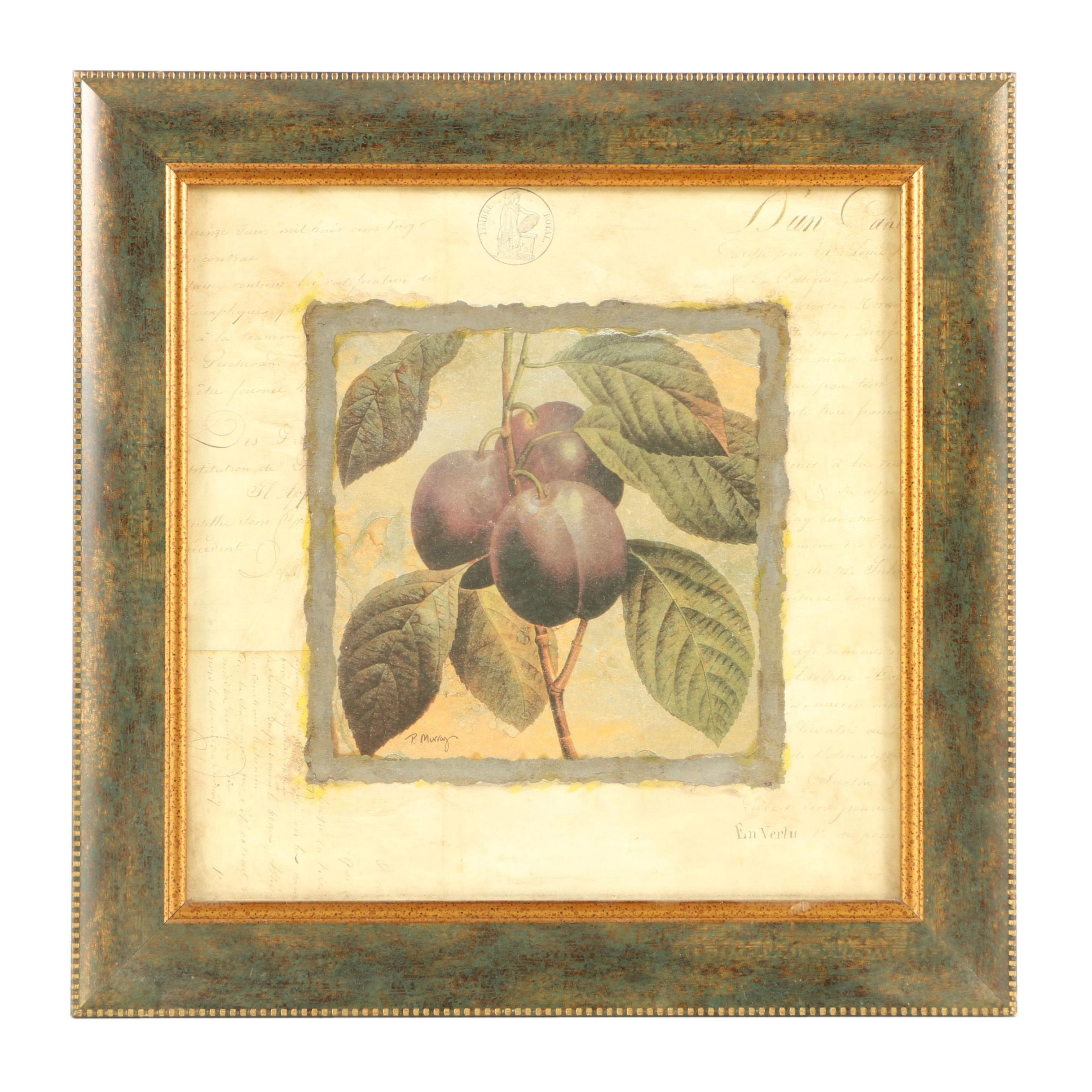 Offset Lithograph of Plums after P. Murray