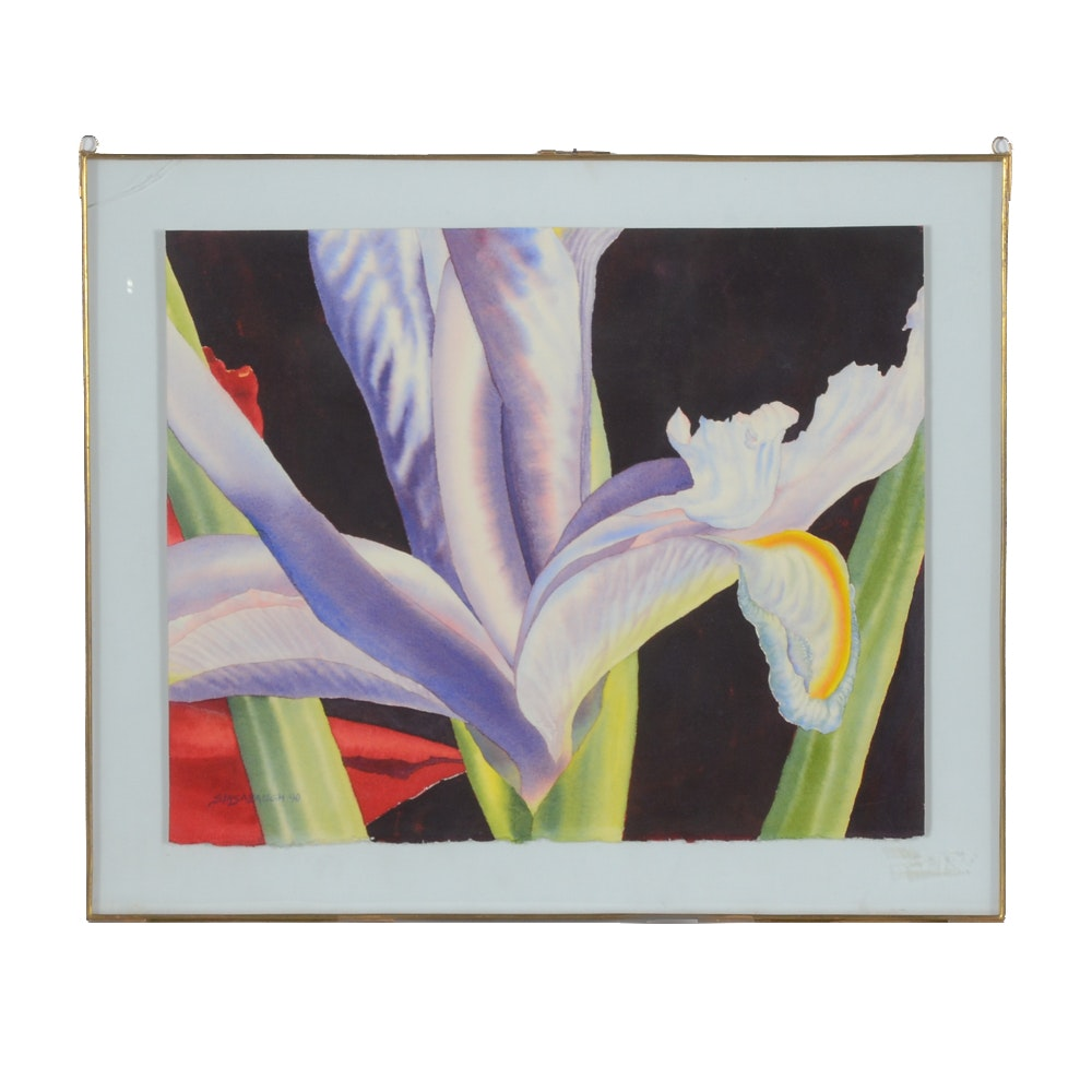 Sinsabaugh Watercolor Painting of an Iris