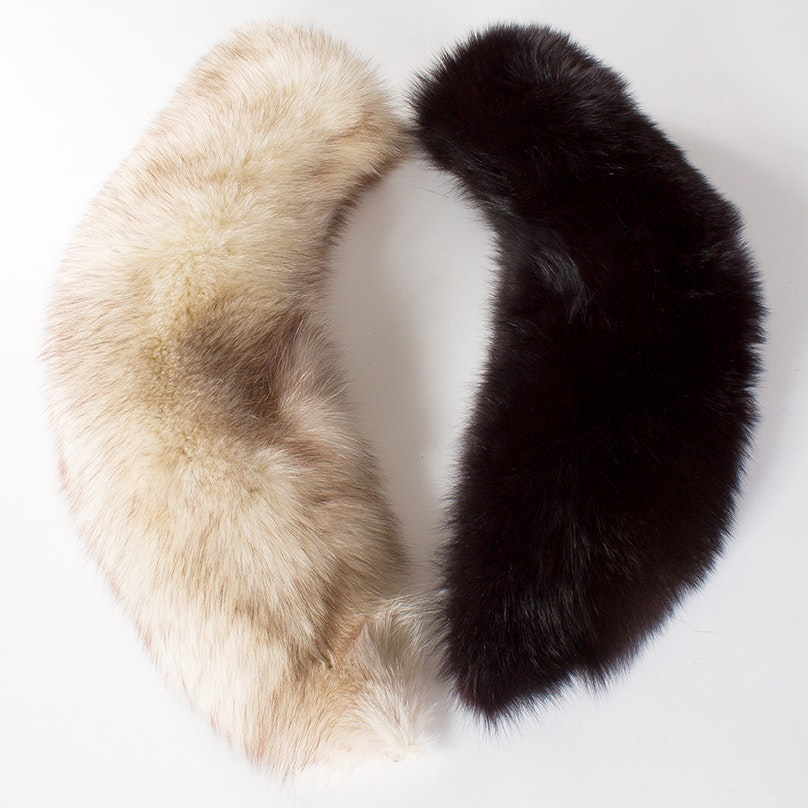 Vintage Fox and Coyote Fur Collars
