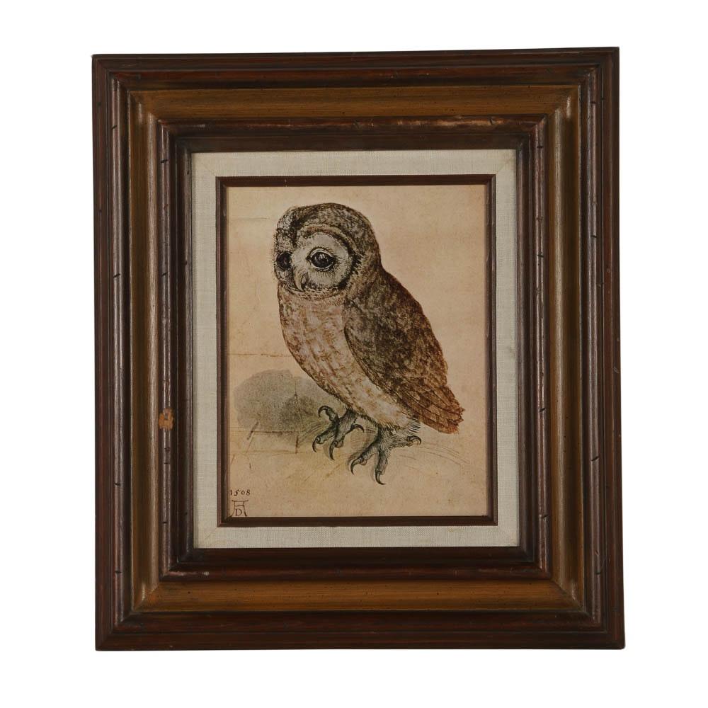 """Offset Lithograph After Albrecht Durer's """"Little Owl"""""""