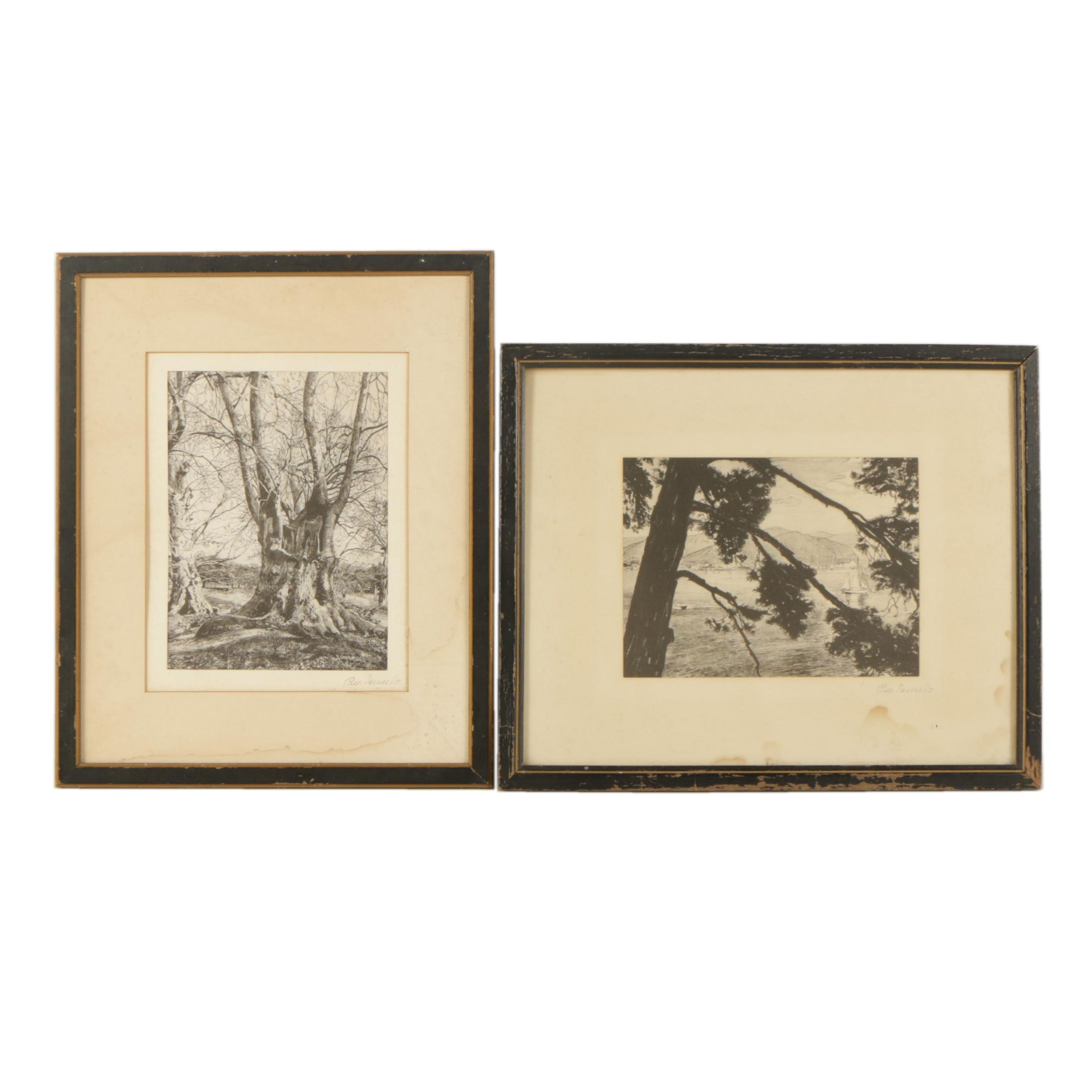 Reproduction Prints of Landscapes on Silk