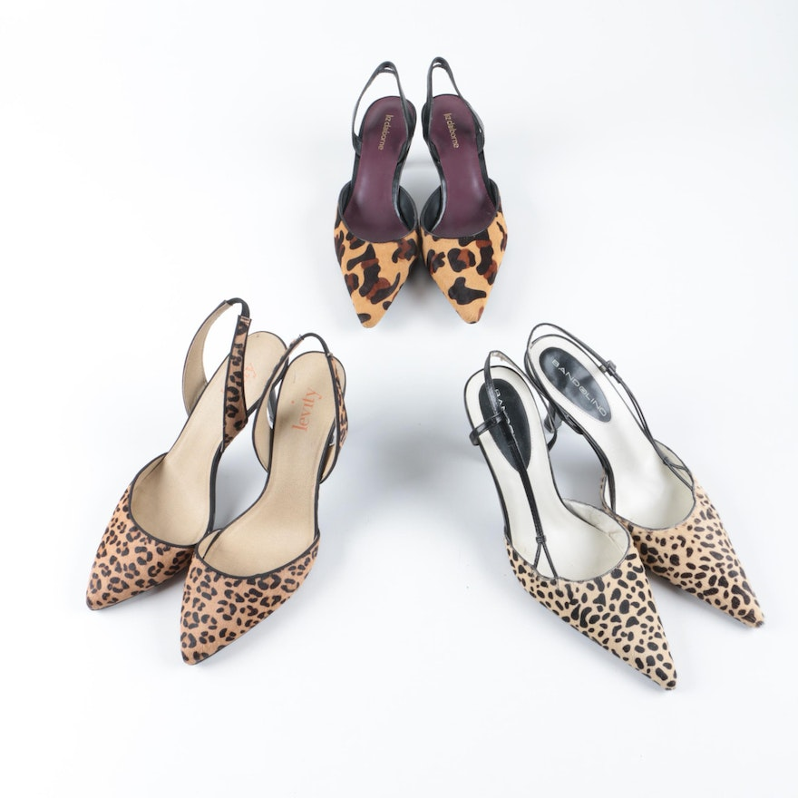 97ad033a71e19 Liz Claiborne, Bandolino and Levity Animal Print Dyed Pony Hair Heels
