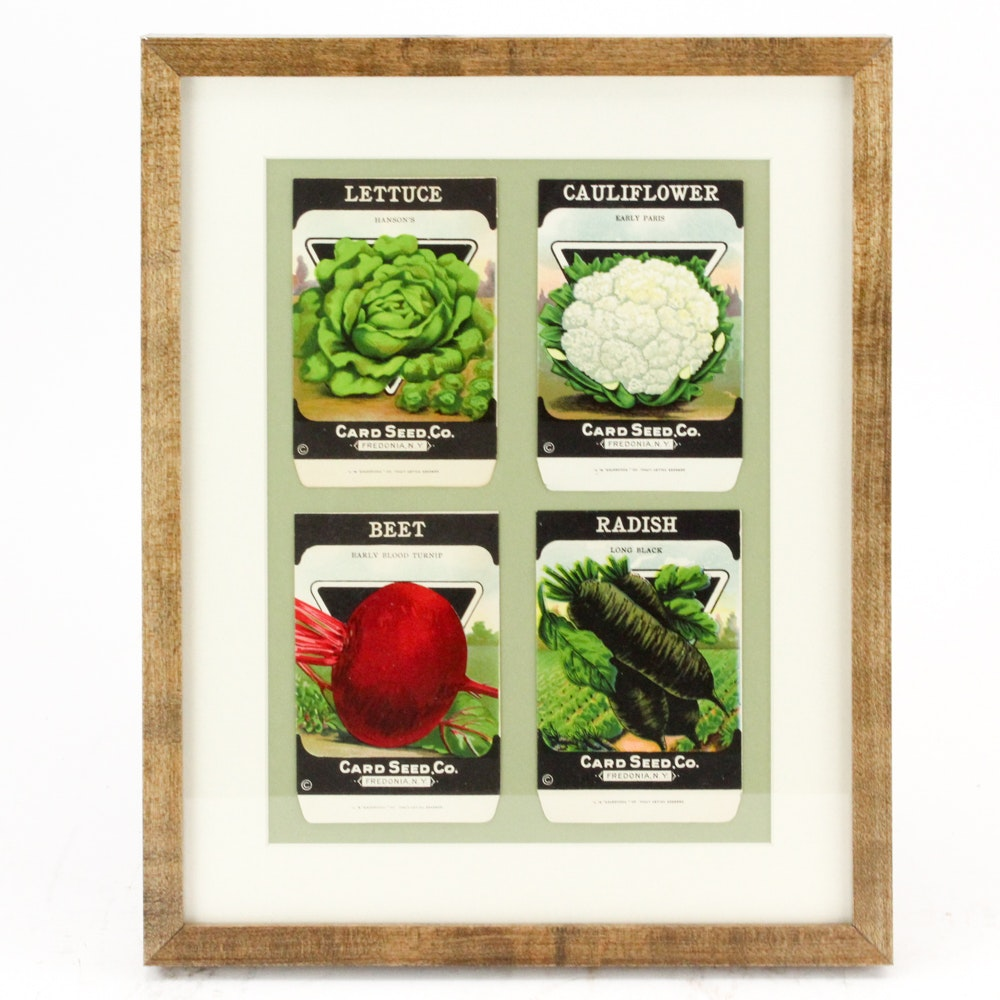 Mid-Century Card Seed Co. Labels for Lettuce, Cauliflower, Beets and Radishes