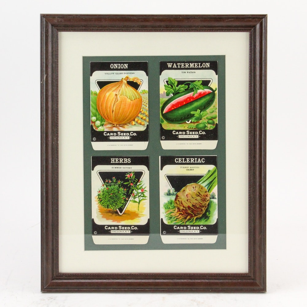 Framed Vintage Seed Packets