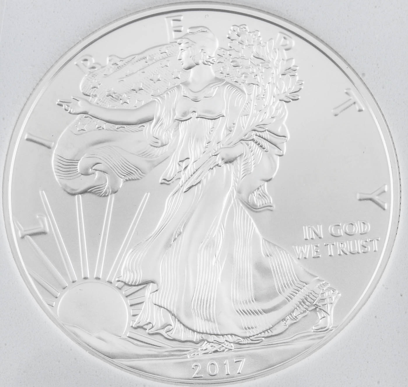 Encapsulated 2017 One Dollar U.S. Silver Eagle