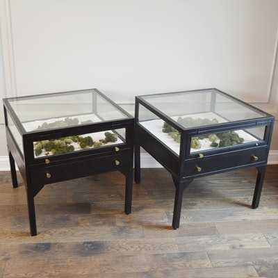 Glass Display Black End Tables