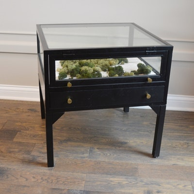 Glass Display Black End Table ...