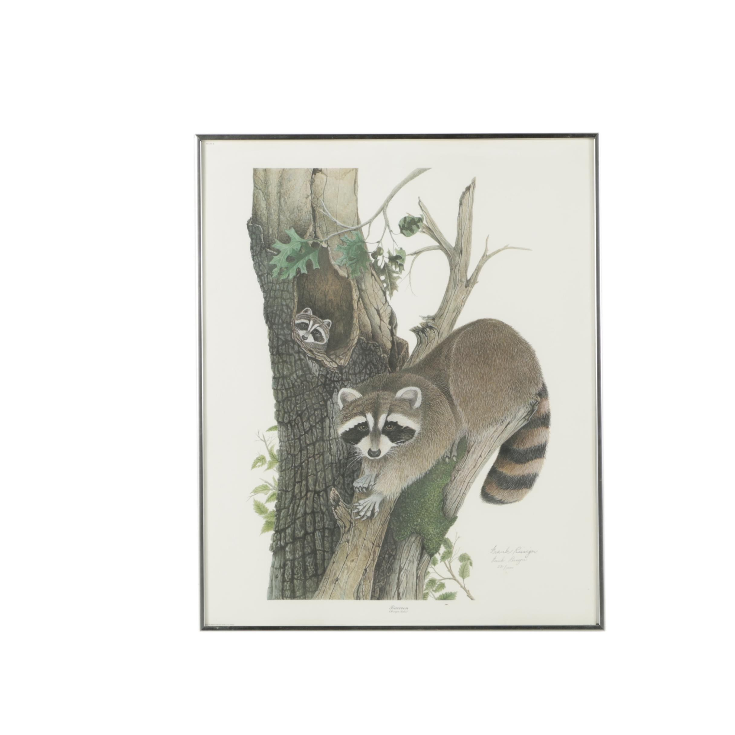 """Frank Reisiger Limited Edition Offset Lithograph """"Raccoon"""""""