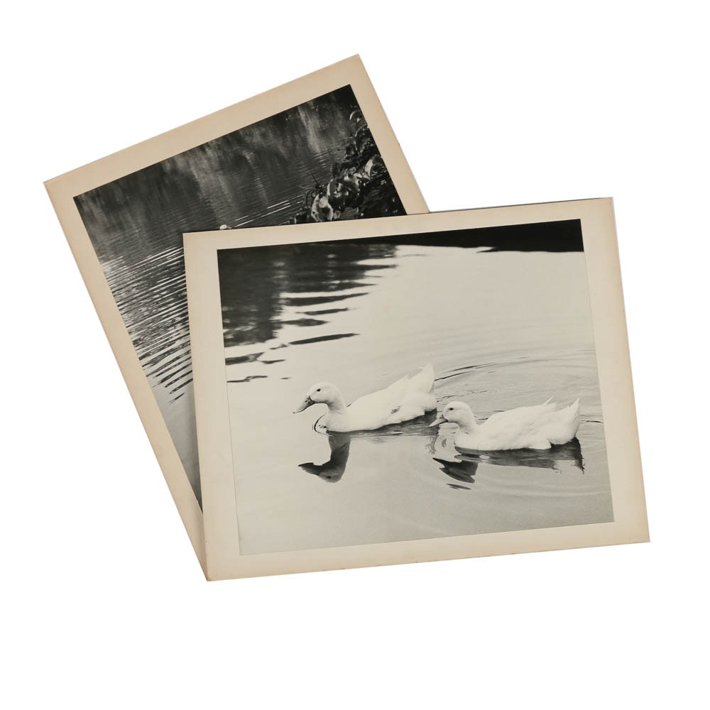 """Two Don Dover Black and White Photographs Including """"Ripples"""""""