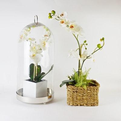 Two Silk Plant Arrangements