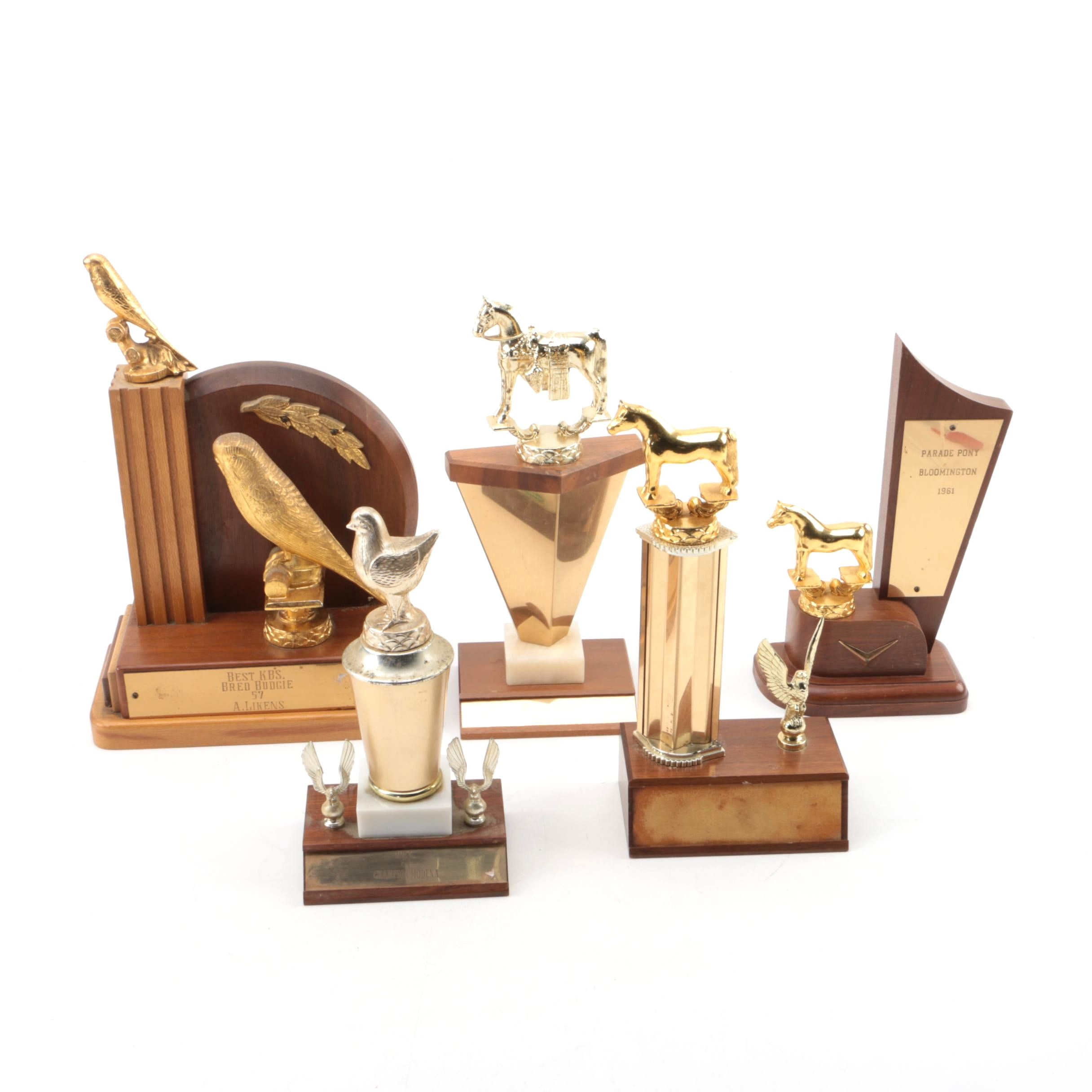 Mid-20th Century Riding Club, Chicken, Pony and Budgie Trophies