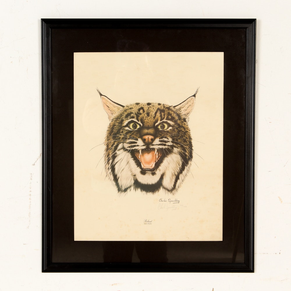 """Charles Spaulding Limited Edition Offset Lithograph """"Bobcat"""""""