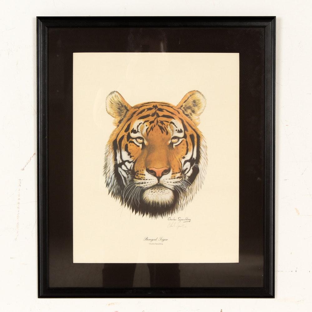 "Charles Spaulding Offset Lithograph ""Bengal Tiger"""