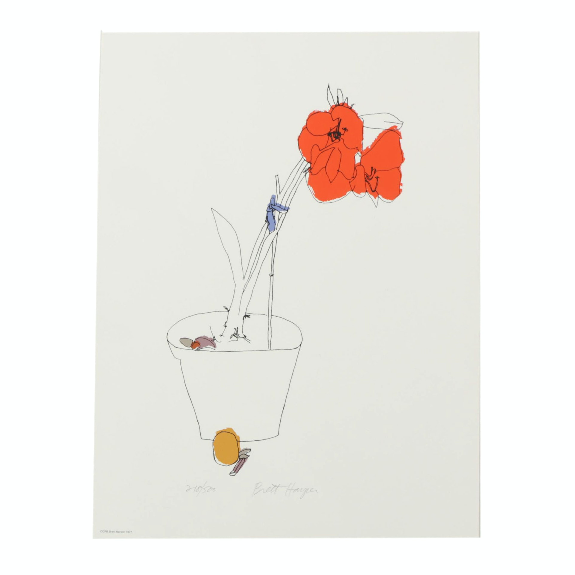 "Brett Harper Signed Limited Edition Serigraph ""Amaryllis"""