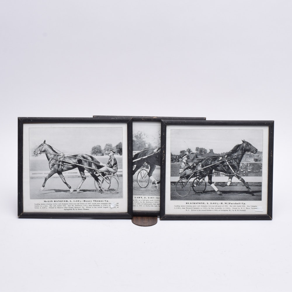 Vintage Harness Racing Photographs of World Champion Trotters and Pacer