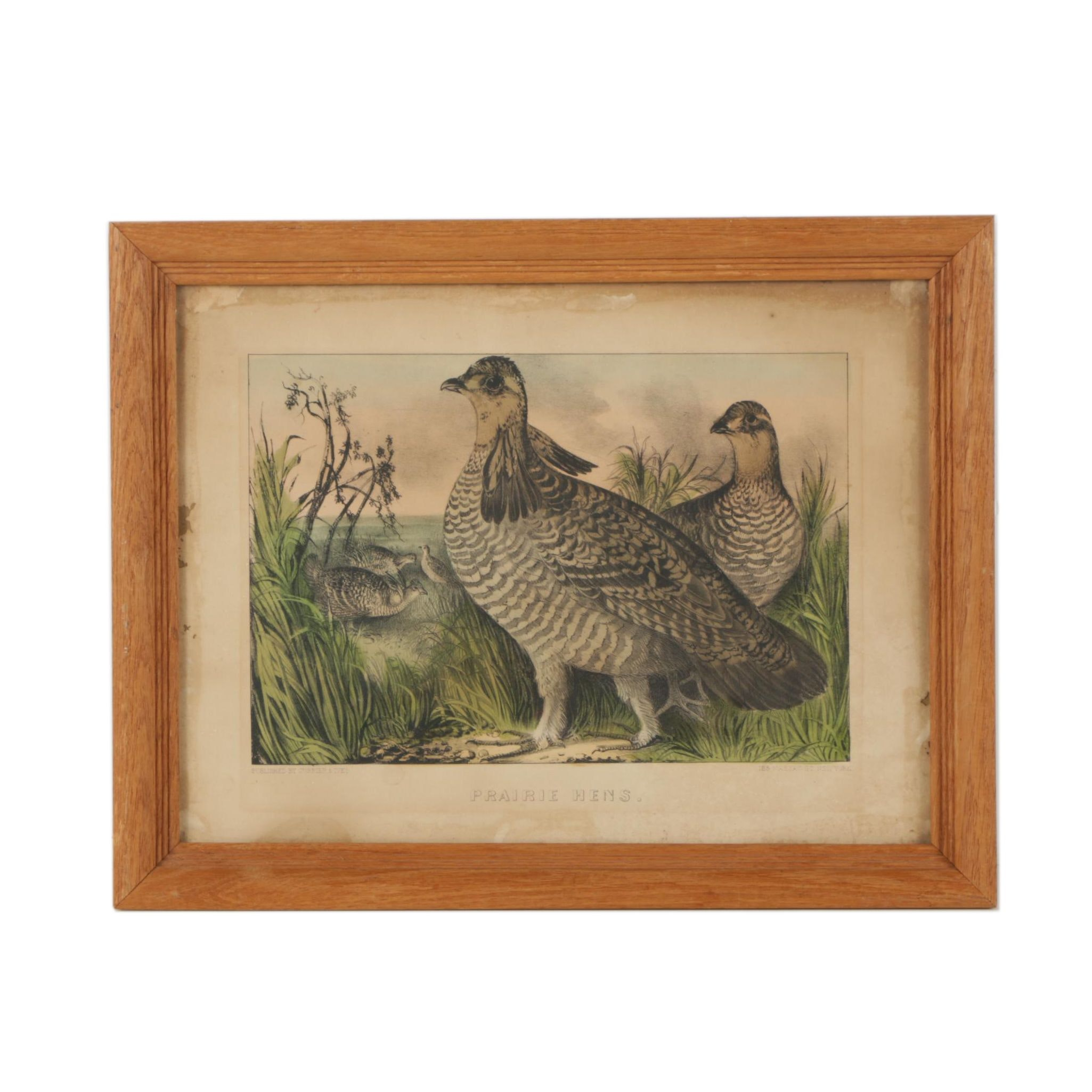 """Currier & Ives Hand-Colored Lithograph """"Prairie Hens"""""""