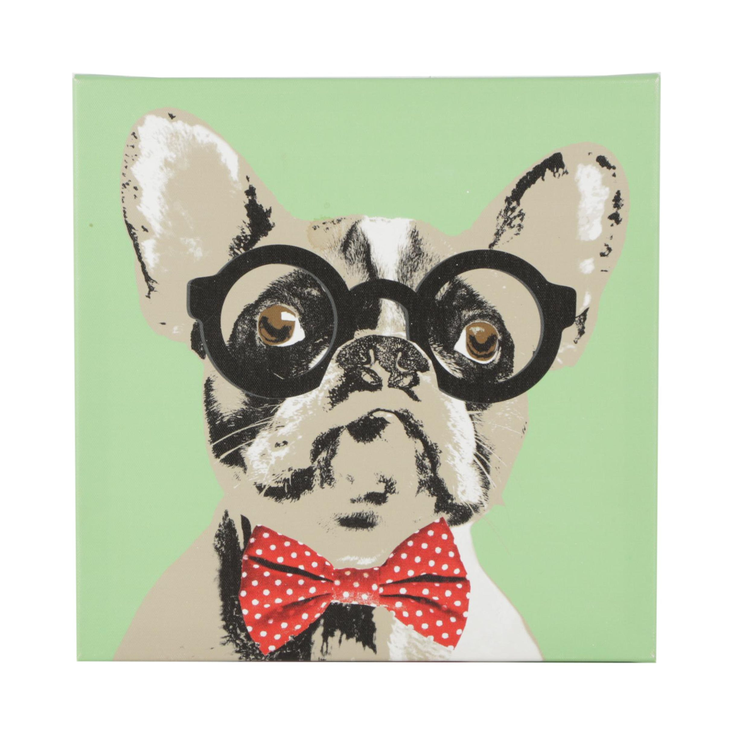 Giclee Print of Boston Terrier