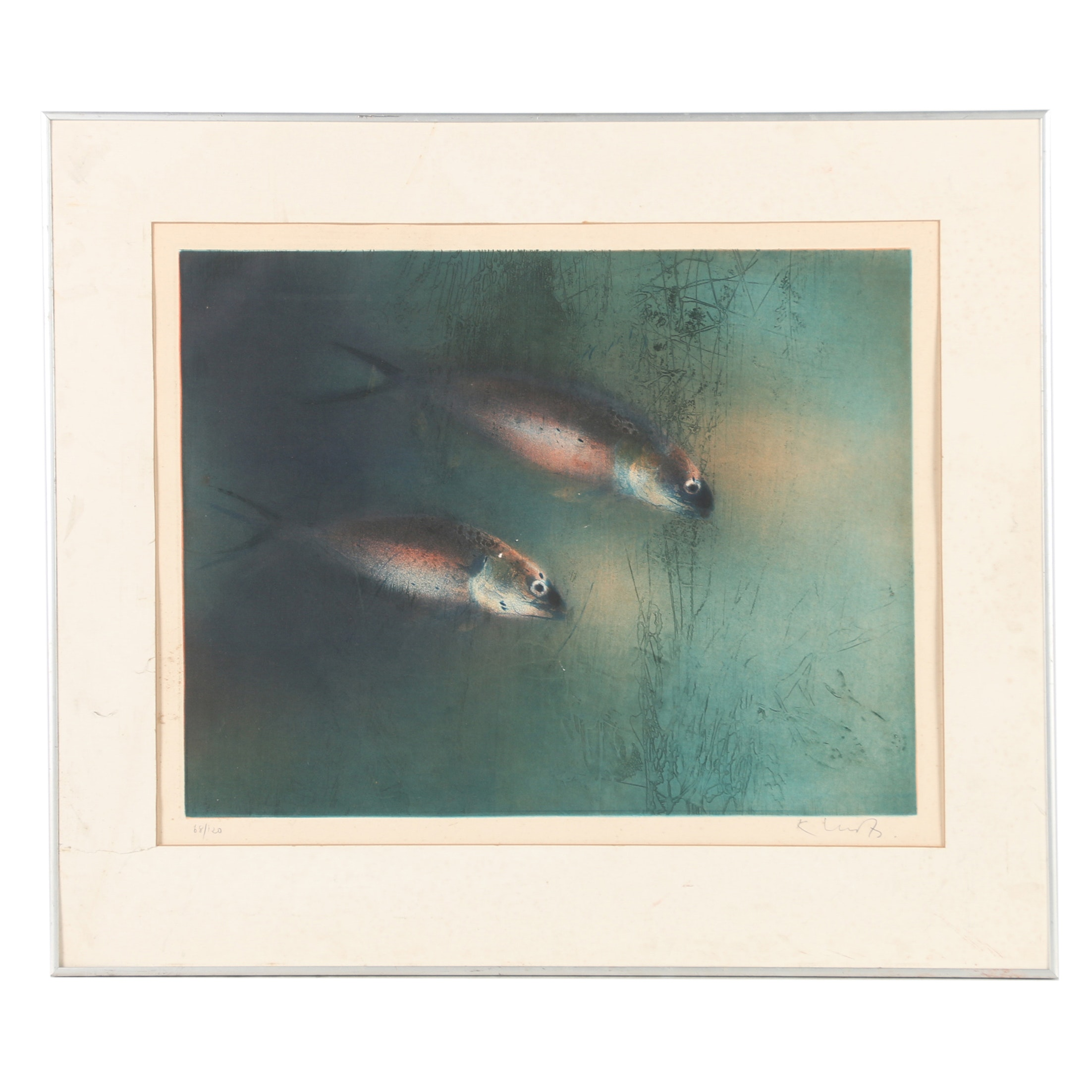 Kaiko Moti Limited Edition Etching