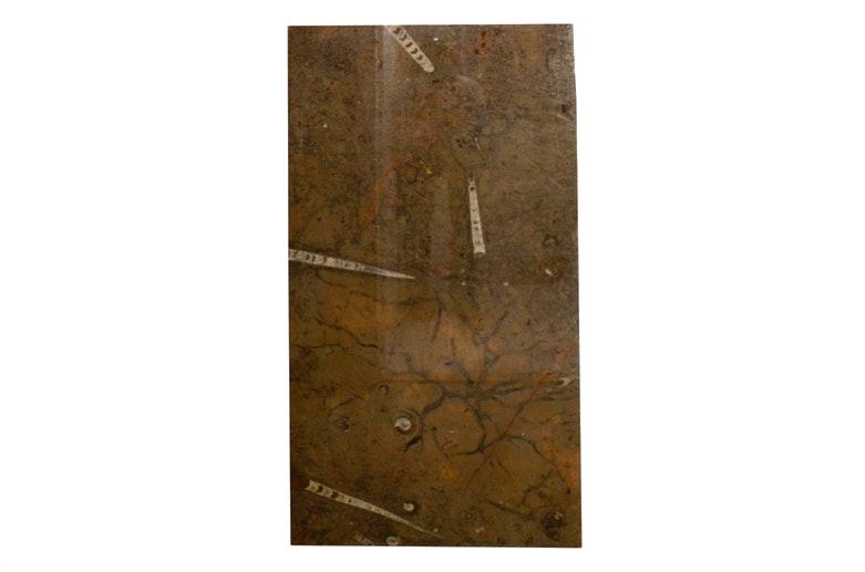 Fossiliferous Limestone Countertop