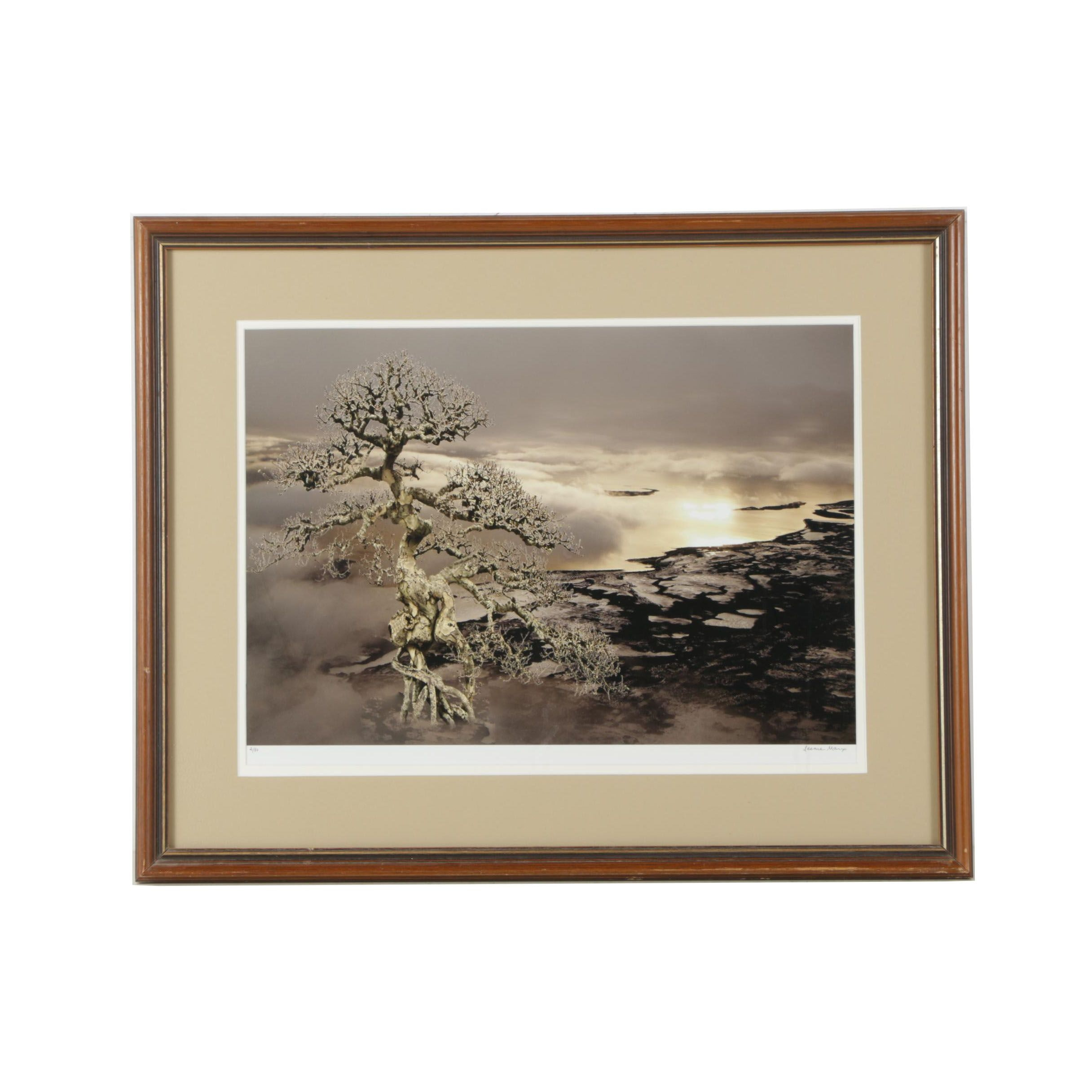 Limited Edition Giclee of a Winter Landscape
