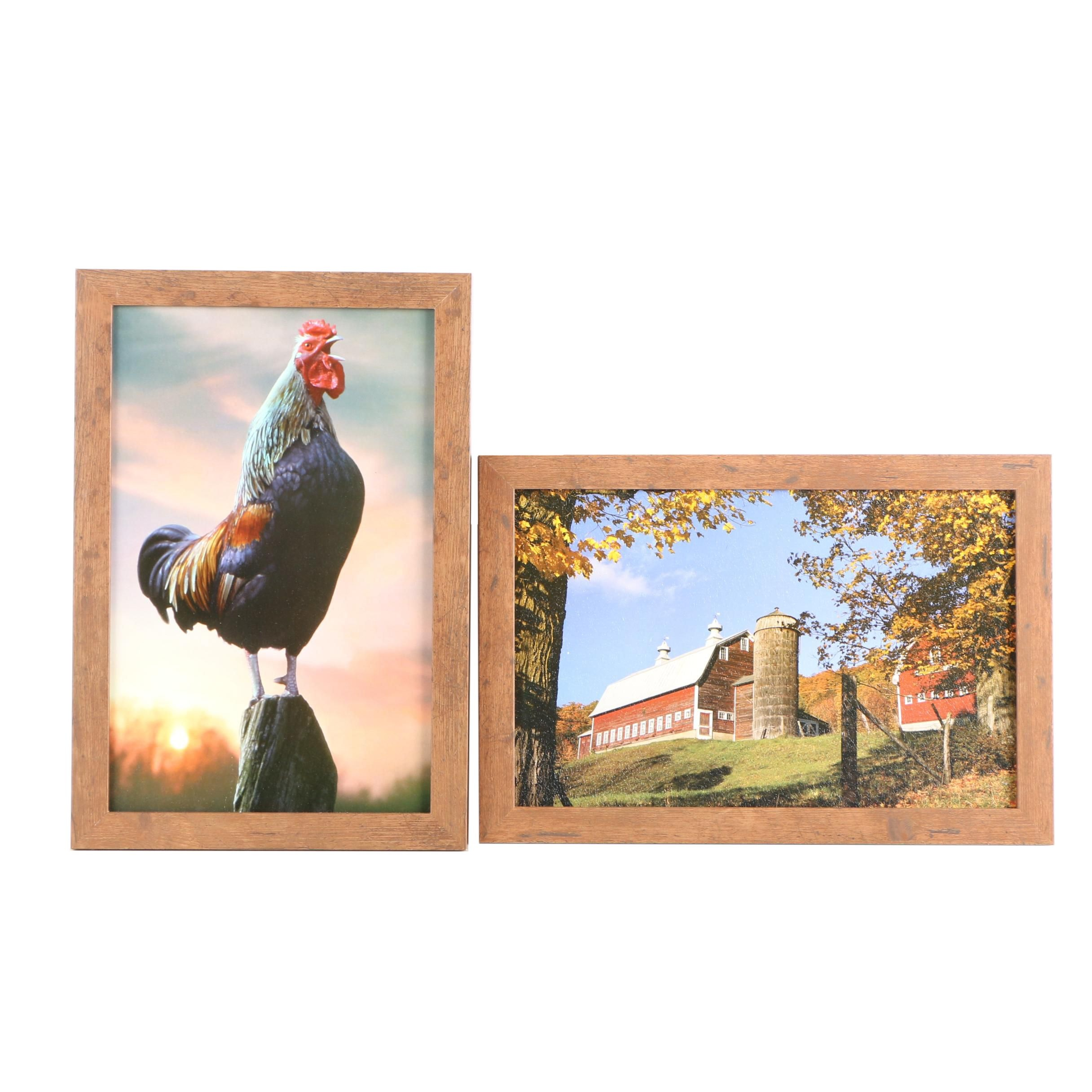 Offset Lithographs After Photographs of Farm Life