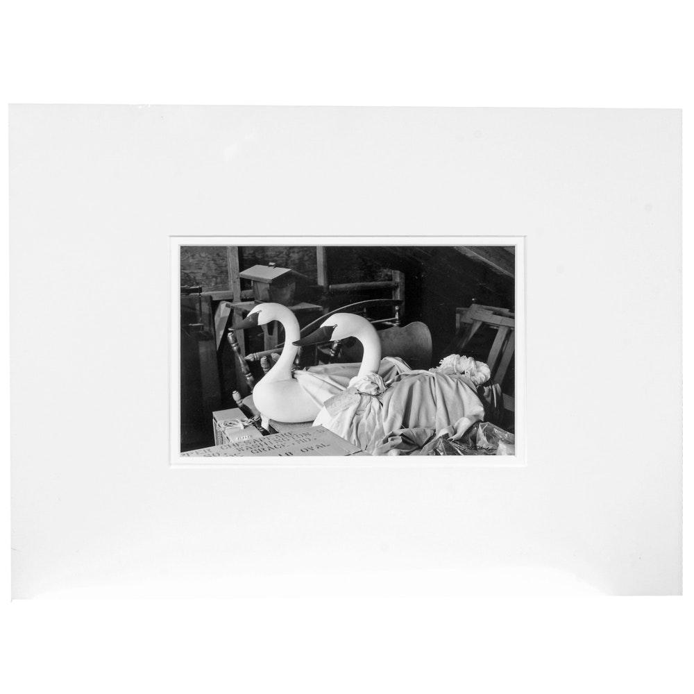 "Laura DeNardo Silver-Gelatin Photographic Print ""Havre De Grace Decoys"""