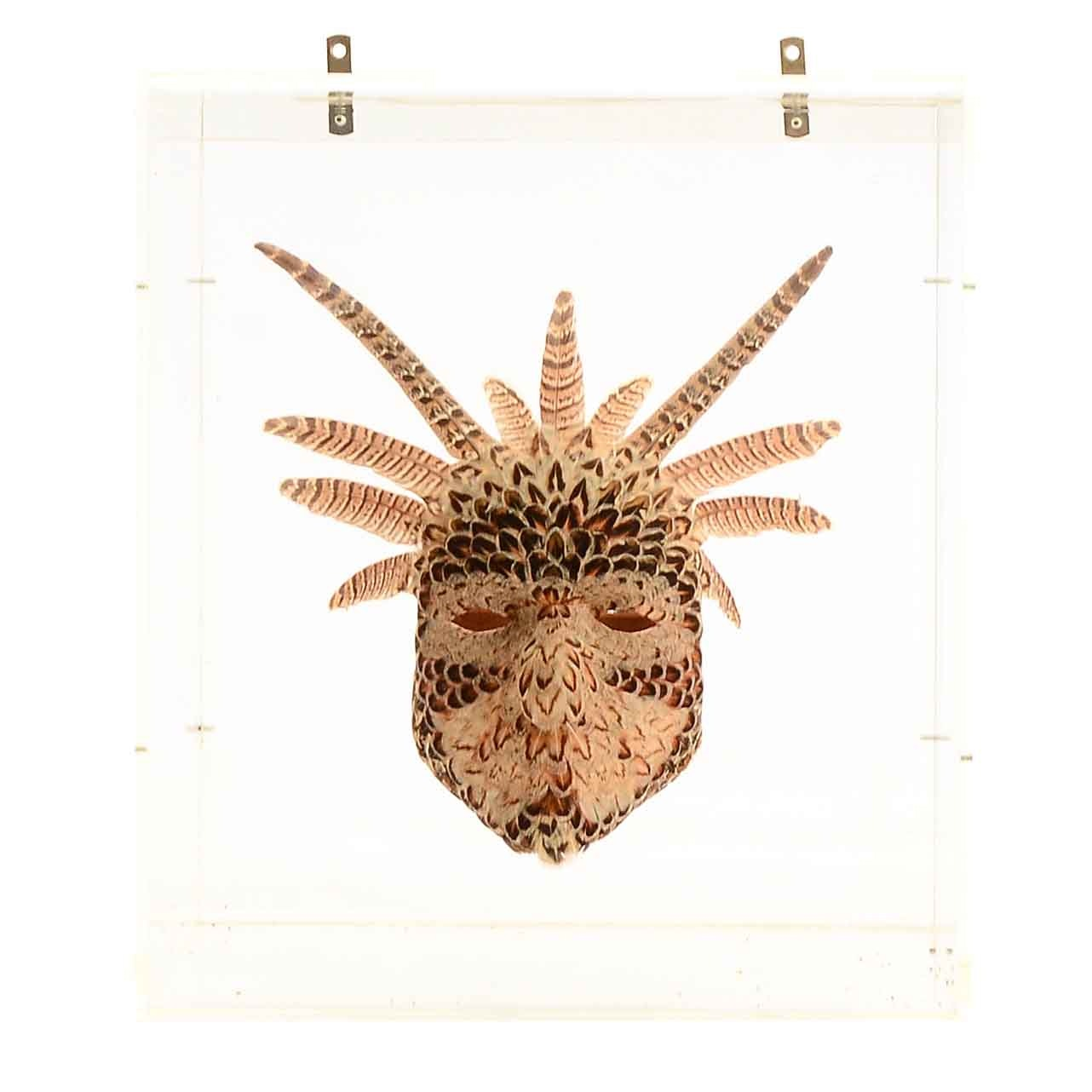 "Daniel Artt ""Fesantra"" Feather Mask with Display Case"