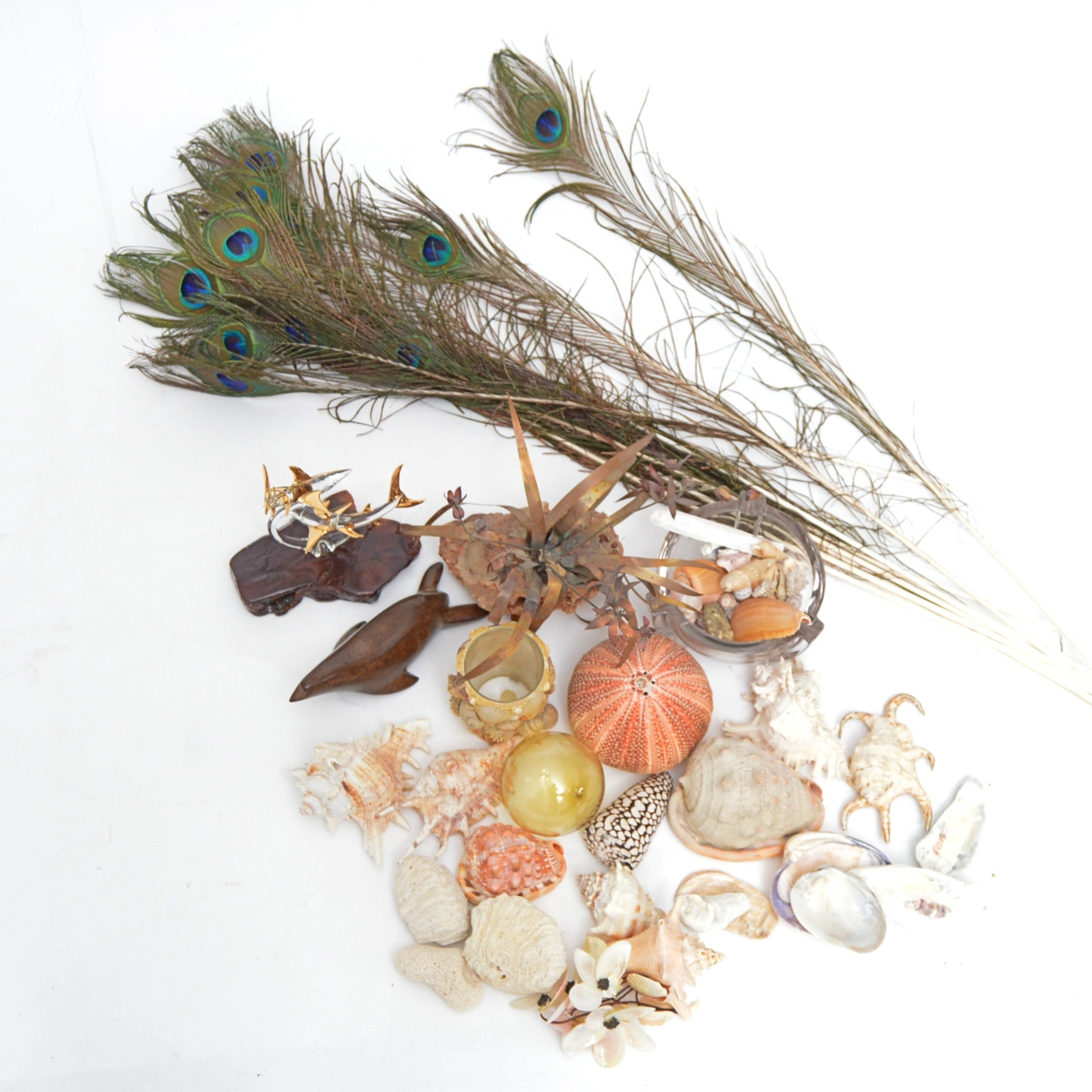 Seashells, Peacock Feathers, Fishing Float and Animal Sculptures