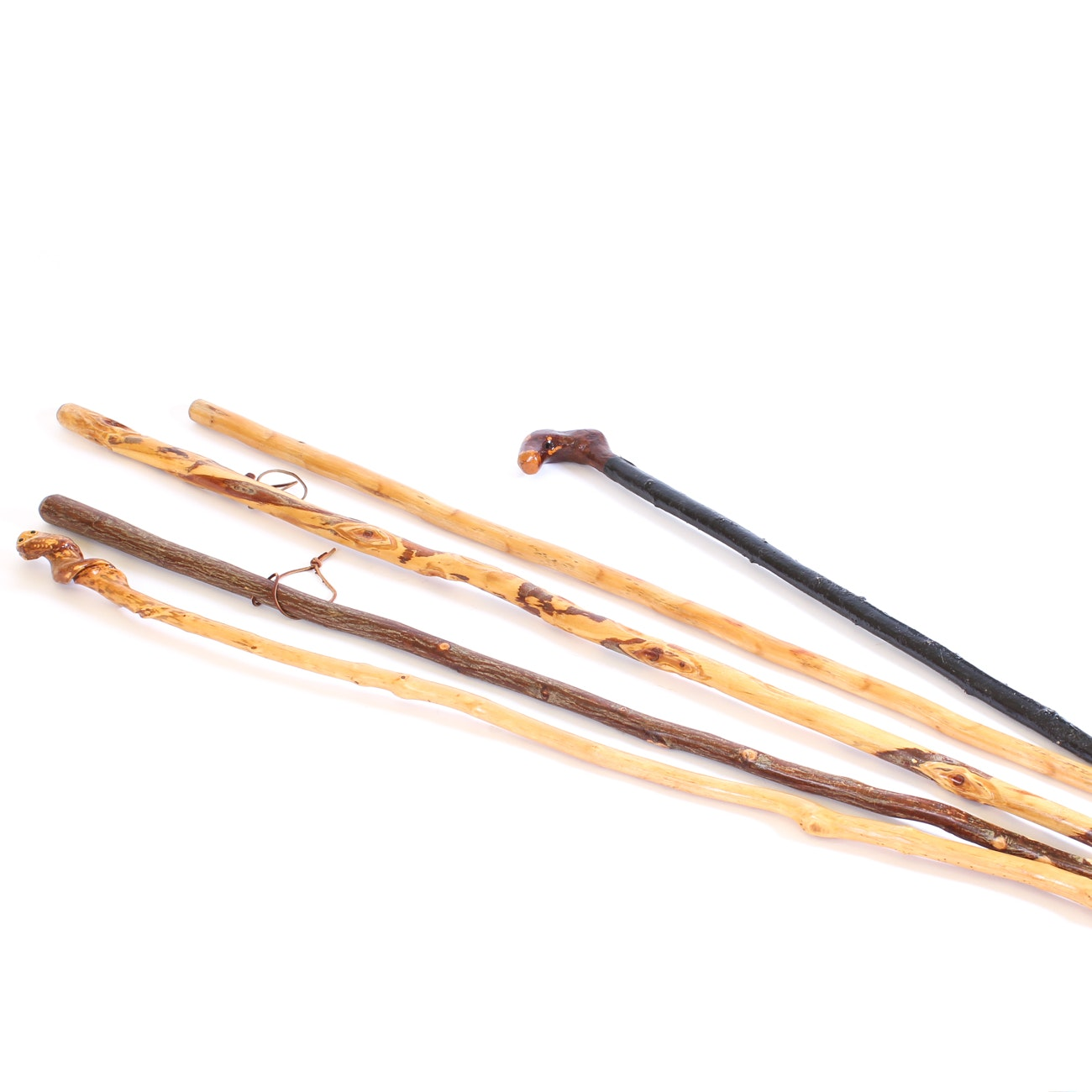 Assorted Walking Sticks with Cane