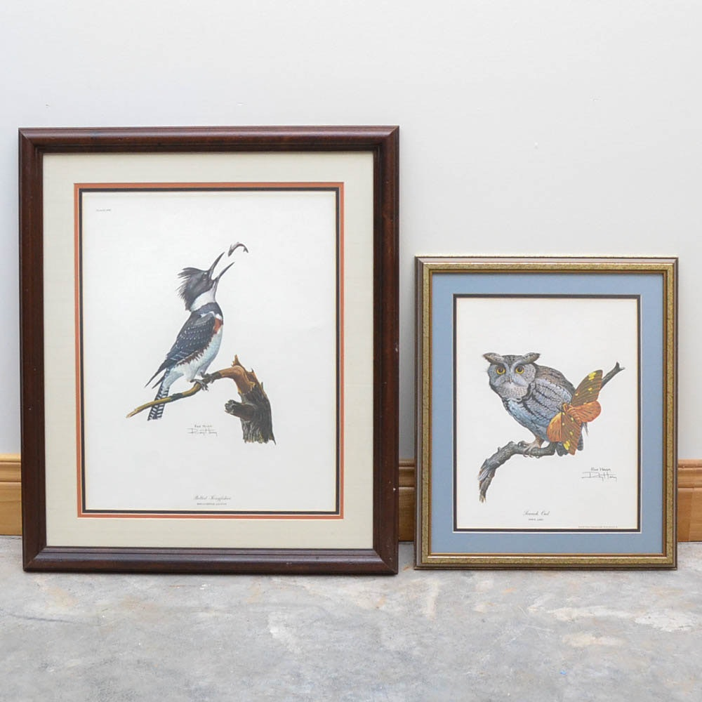 "Ray Harm Photo Offset Lithograph Prints ""Belted Kingfisher"" and ""Screech Owl"""