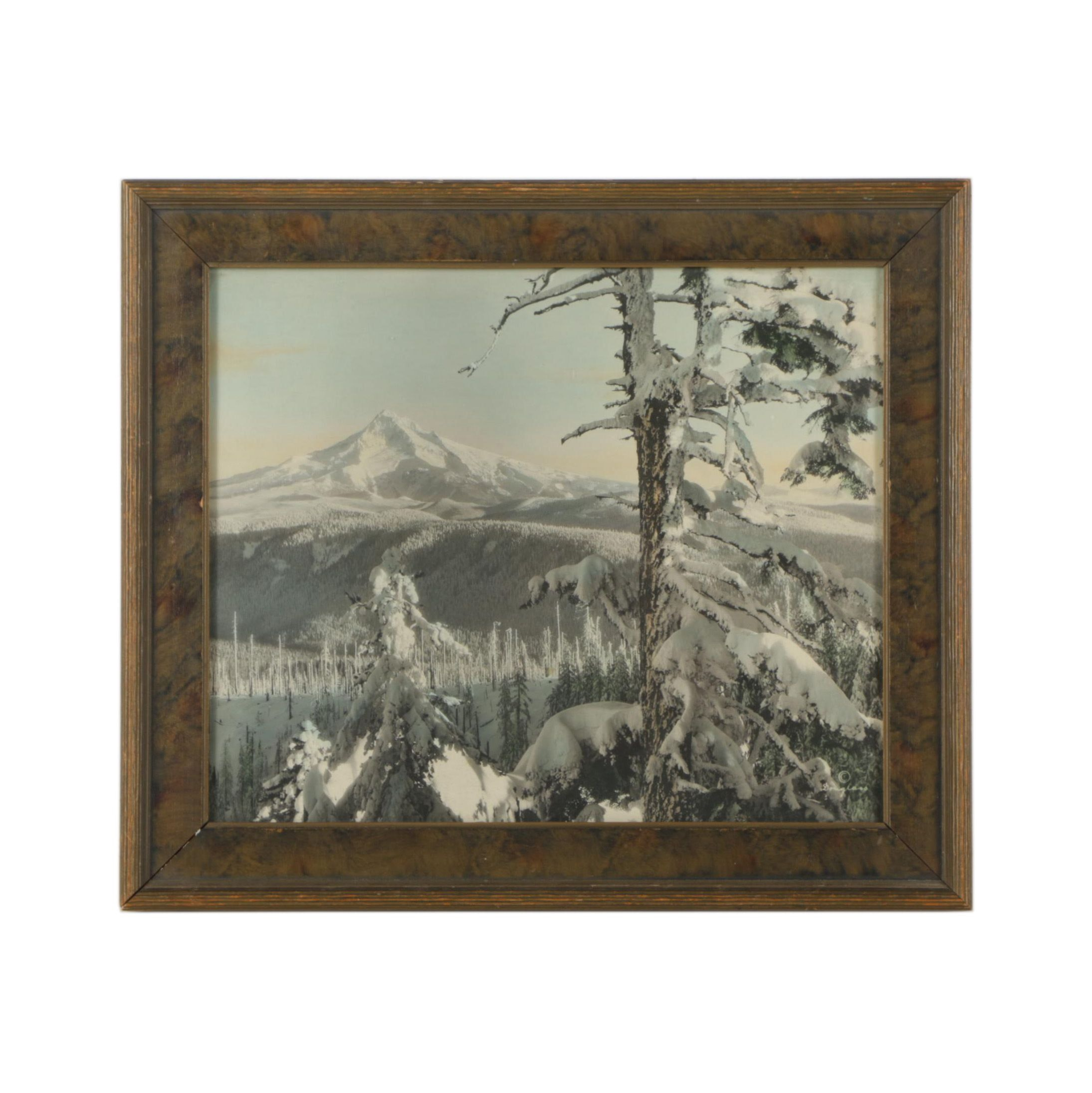 Mid Century Hand Colored Photograph After Douglass of Winter Landscape